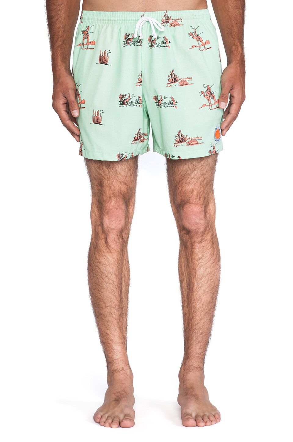 Ambsn Nomad Swim Short in Mint