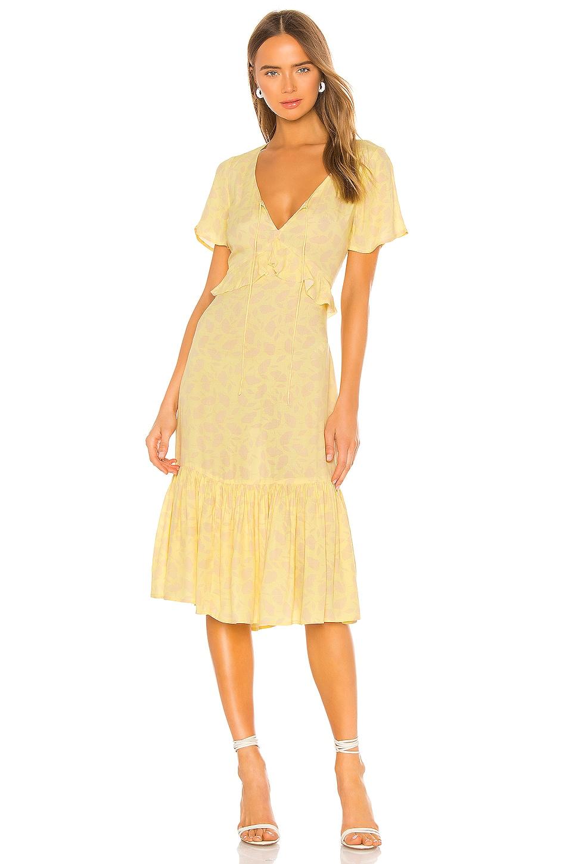 AMUSE SOCIETY Scarlett Short Sleeve Midi Dress in Pina
