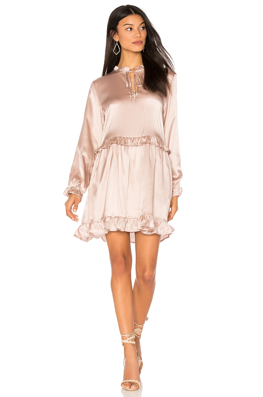 ANINE BING Frill Silk Dress in Rose