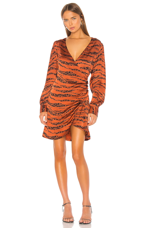 ANINE BING Penelope Dress in Zebra