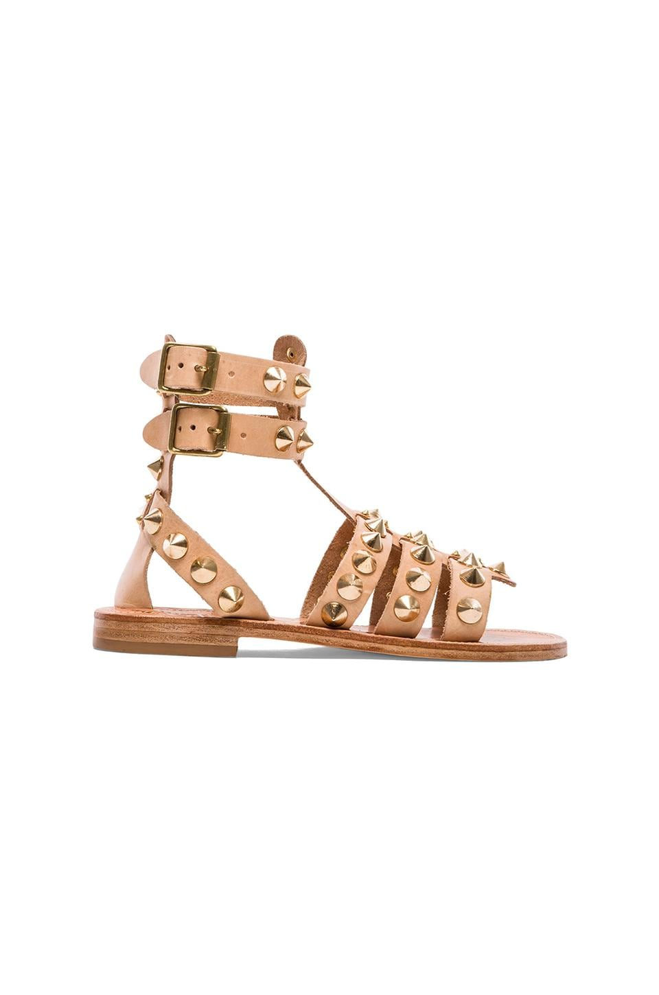 ANINE BING Studded Sandal in Natural
