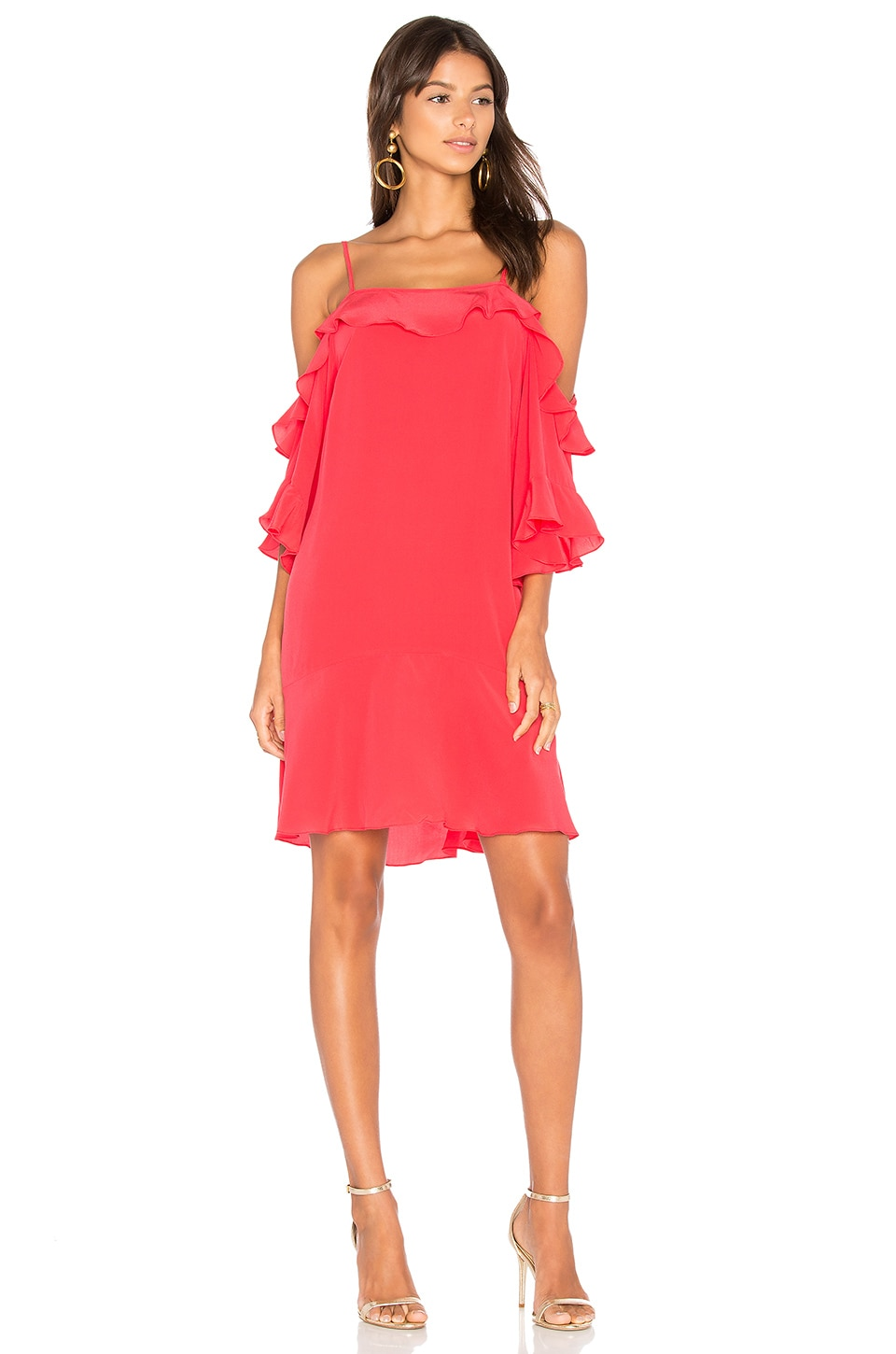 ANIMALE Ruffle Front Mini Dress in Roma