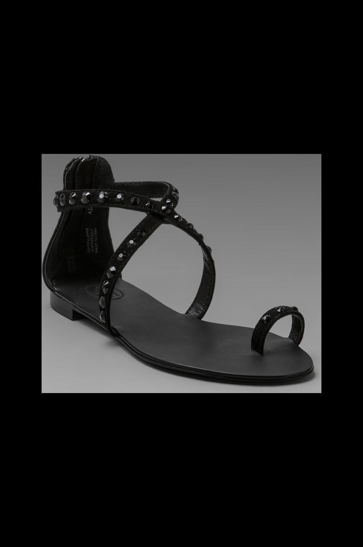 Ash Miami Sandal in Black