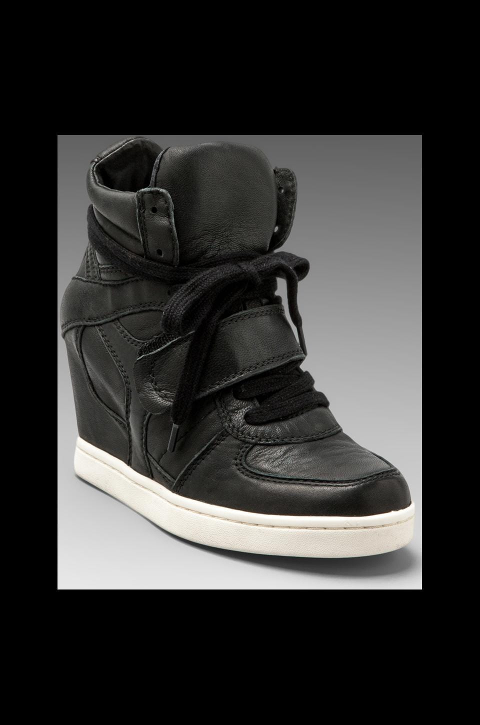 Ash Cool Ter Wedge Sneaker in Black