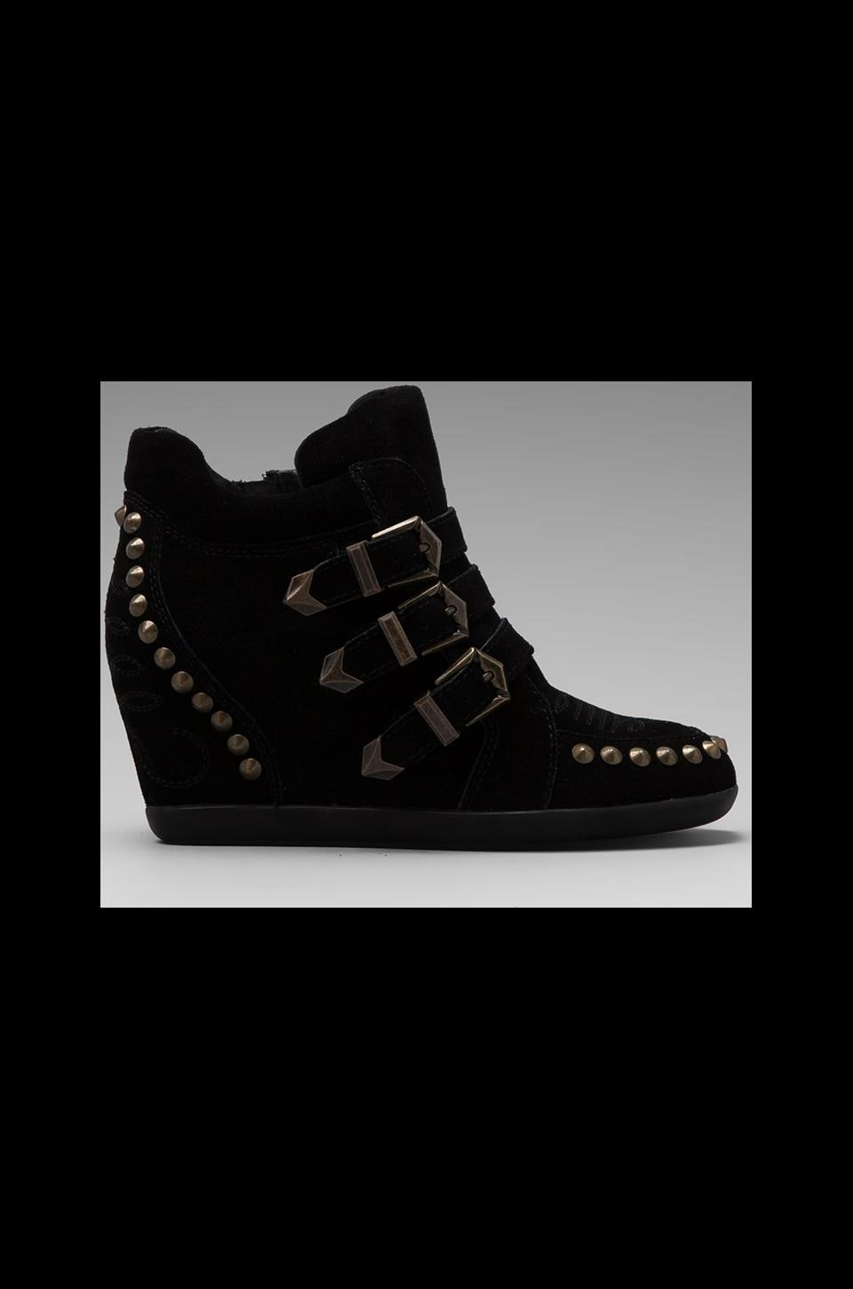 Ash Bobo Studded Wedge Sneaker in Black