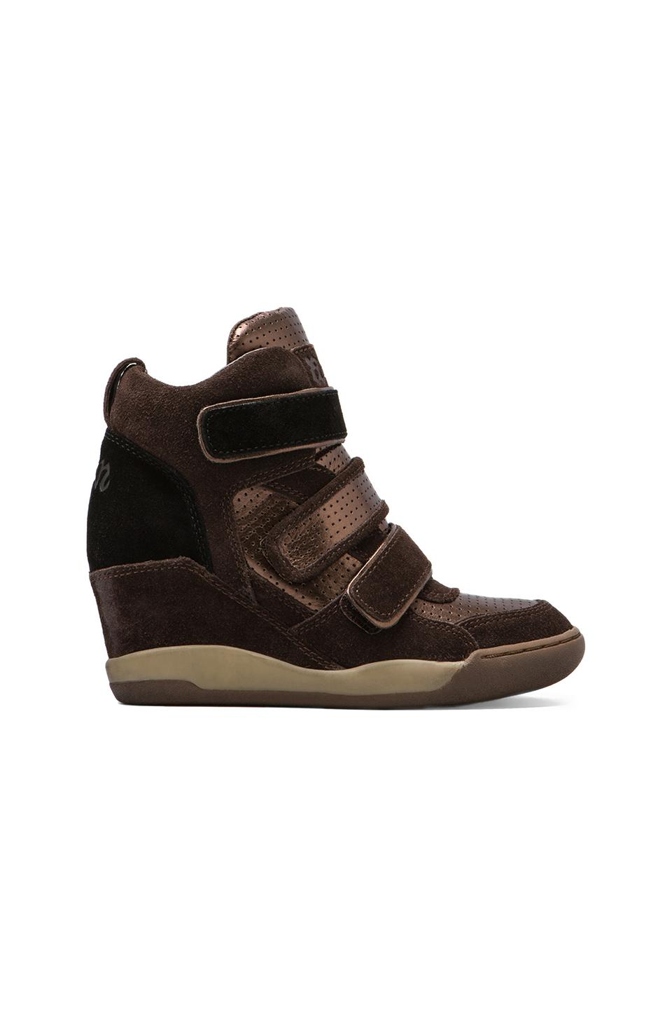 Ash Alex Bis Wedge Sneaker in Wood Ash