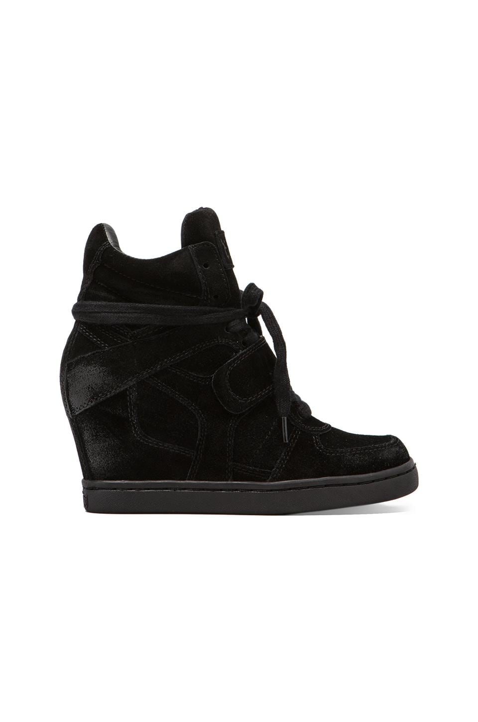 Ash Cool Wedge Sneaker in Black