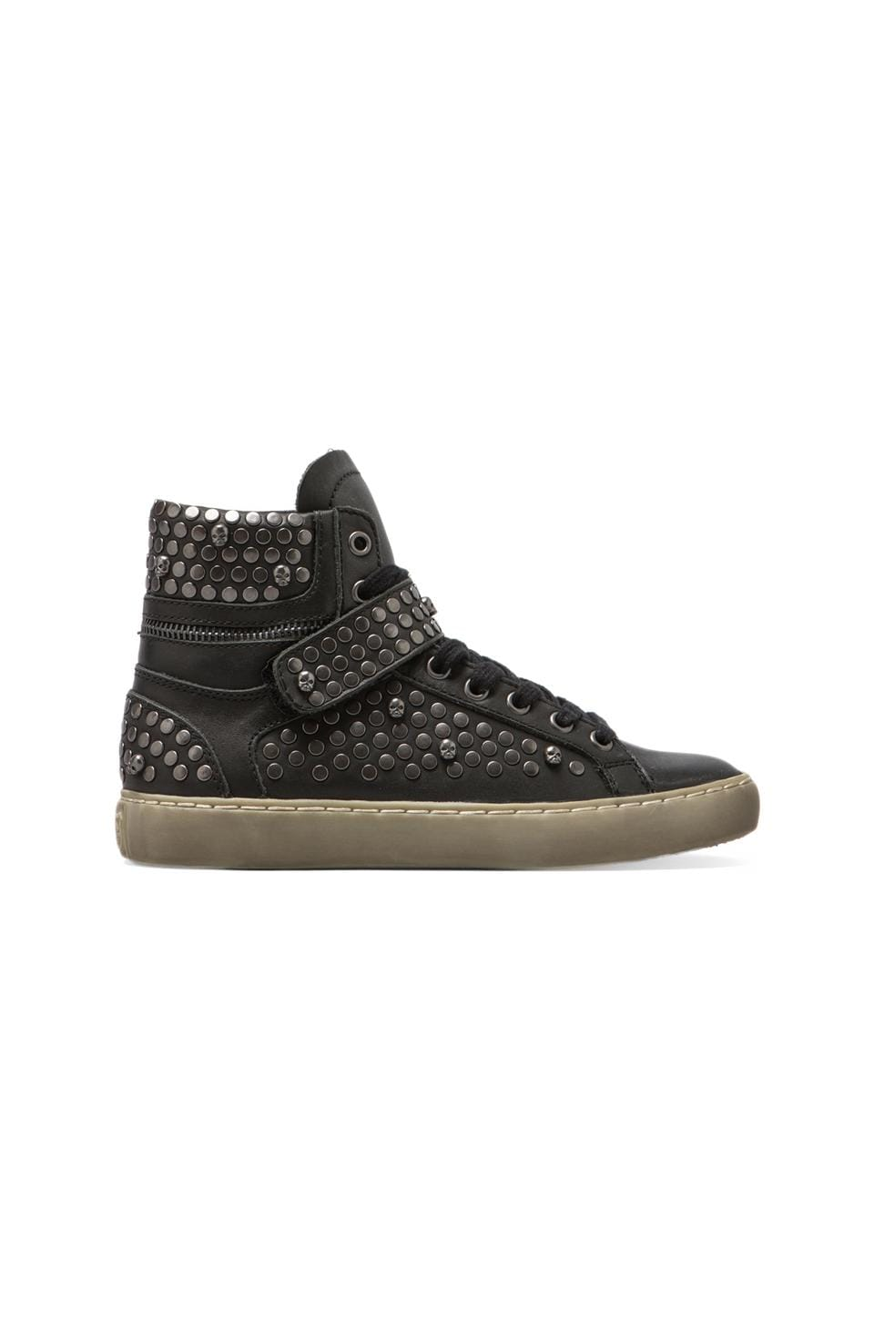 Ash Sandy Sneaker in Black/Antic Gun Studs