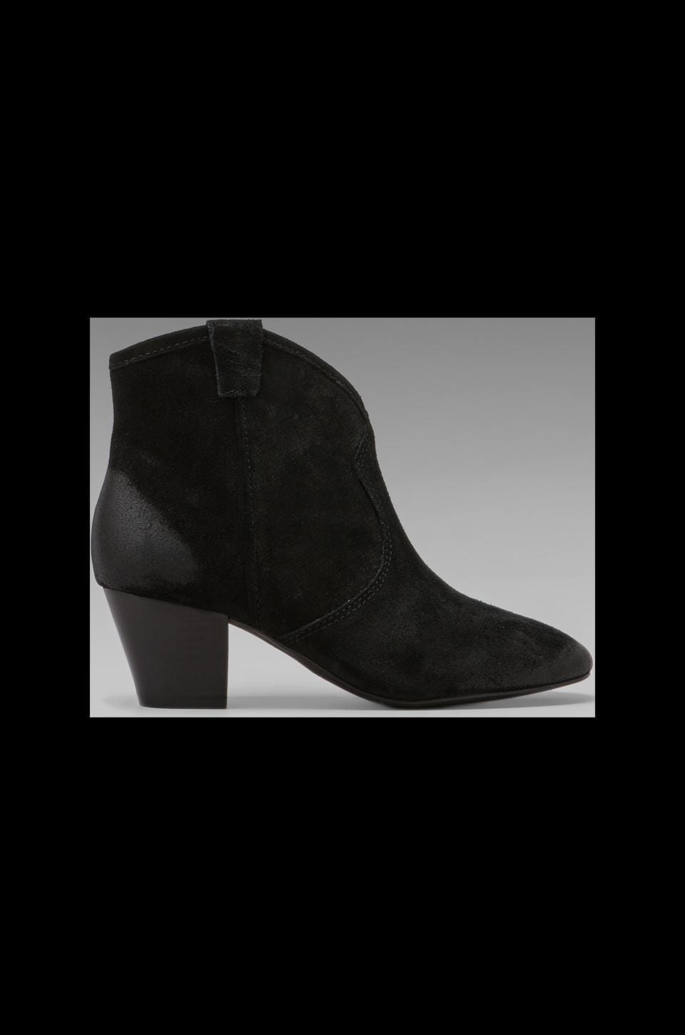 Ash Spiral Bootie in Black