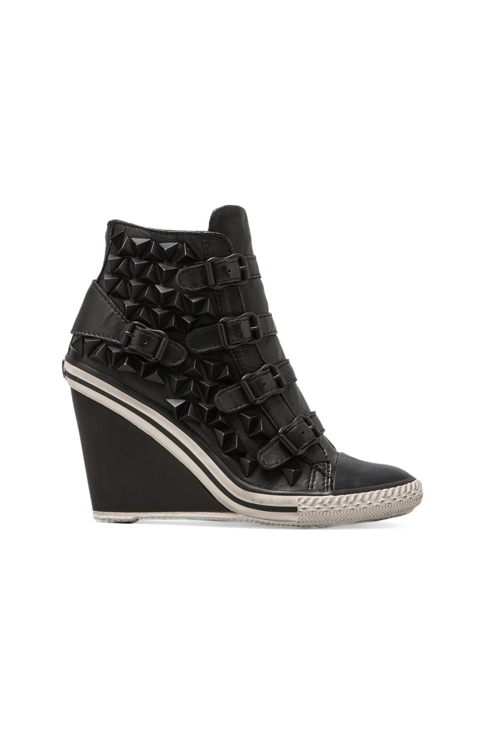 Ash Tiffany Wedge Sneaker in Black/Black Studs