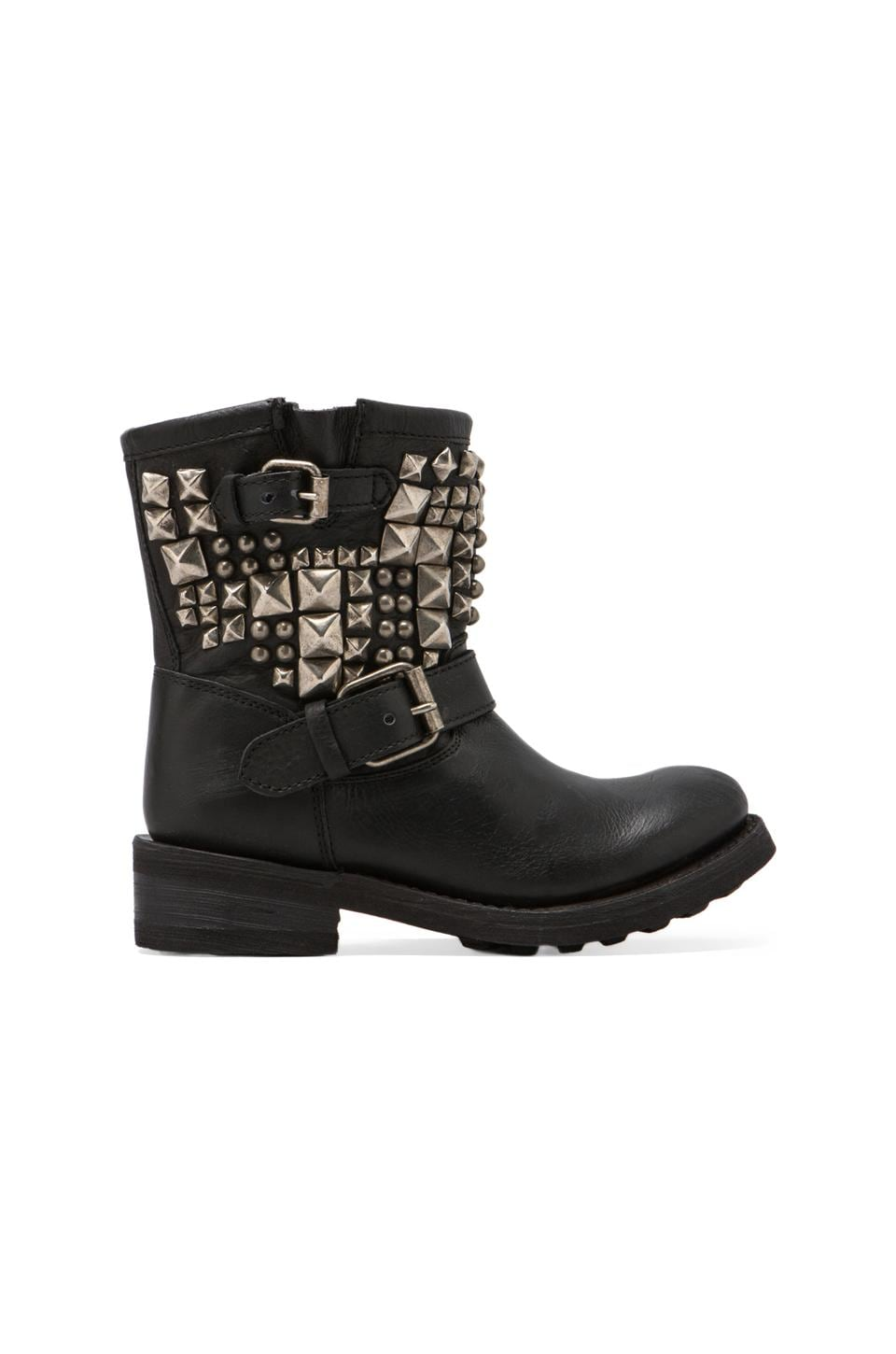Ash Tyler Ter Boot in Black