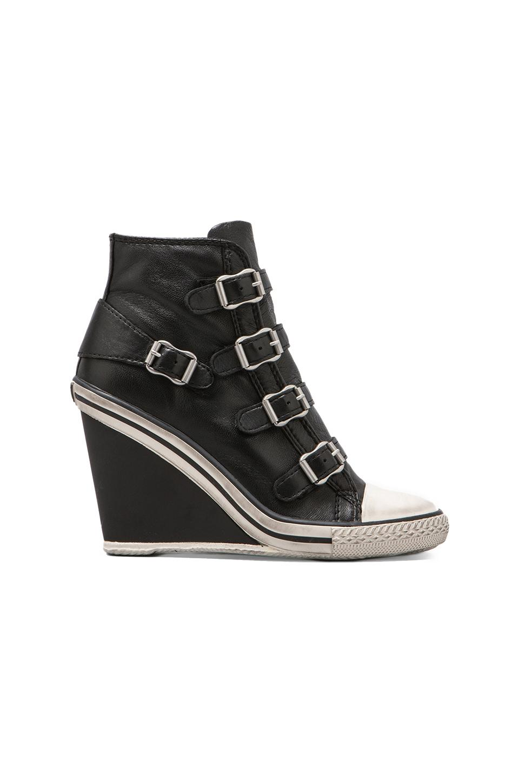 Ash Thelma Wedge Sneaker in Black