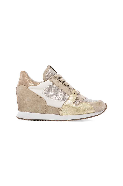 Ash Dean Sneaker in Clay & Silver