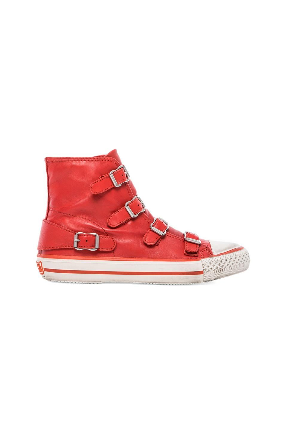 Ash Virgin Sneaker in Coral
