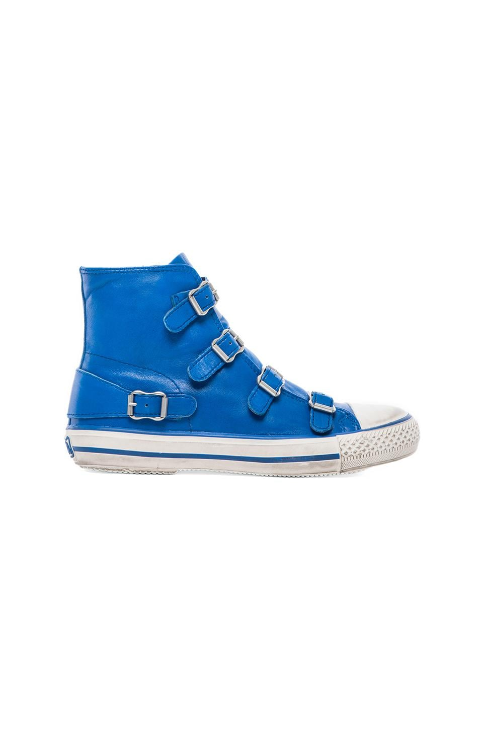 Ash Virgin Sneaker in Royal