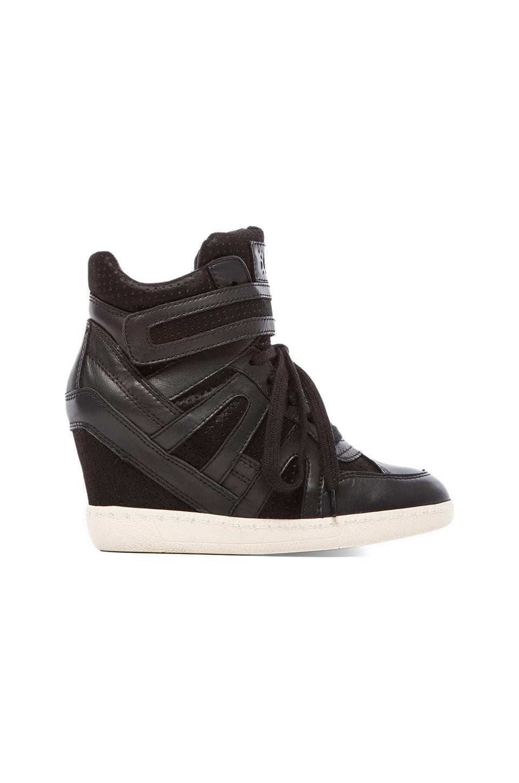 Ash Beck Bis Sneaker in Black