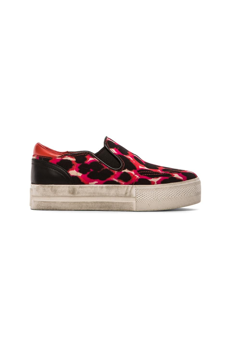 Ash Jungle Bis Sneaker in Coral & Black & Pink