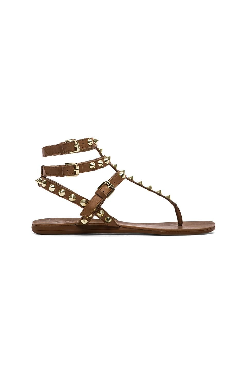 Ash Oasis Sandals in New Nude