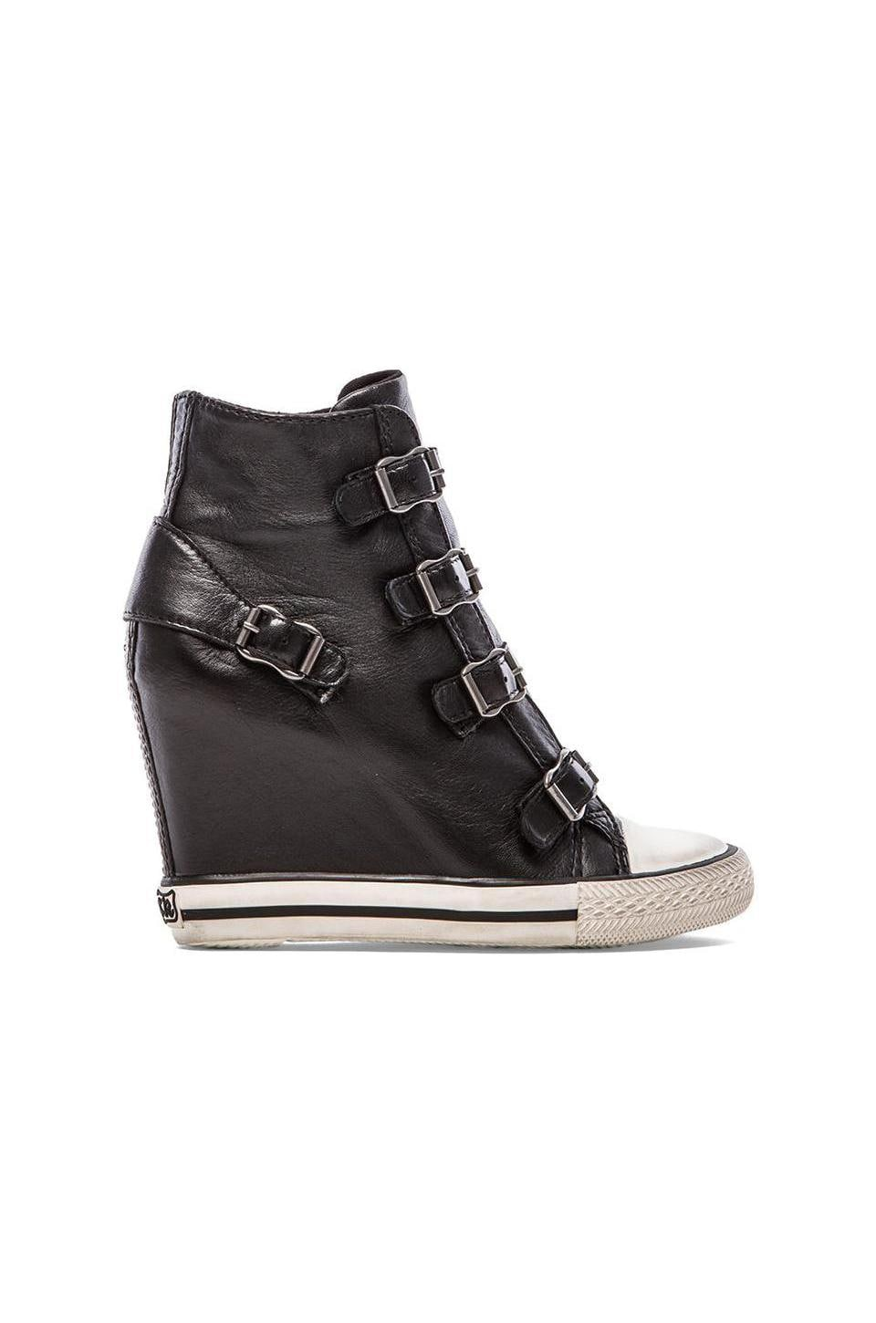 Ash United Sneaker Wedge in Black