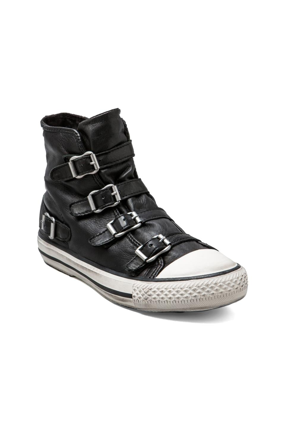 Ash Virgin Sneaker in Black