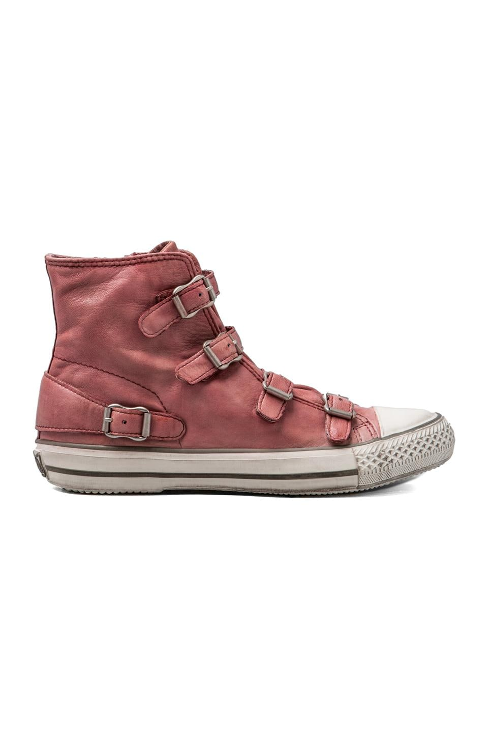 Ash Virgin Sneaker in Rose