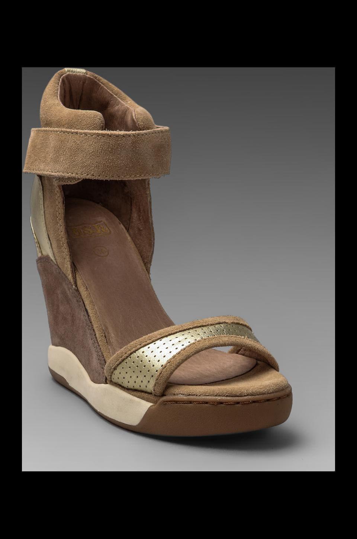 Ash Eloise Bis Wedge Sandal in Platine/Chamois/Vison