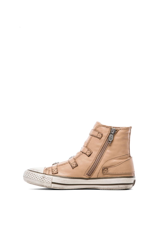 Ash Virgin Sneaker in Clay