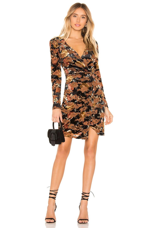 ASTR the Label Lanita Velvet Dress in Black Rust Floral