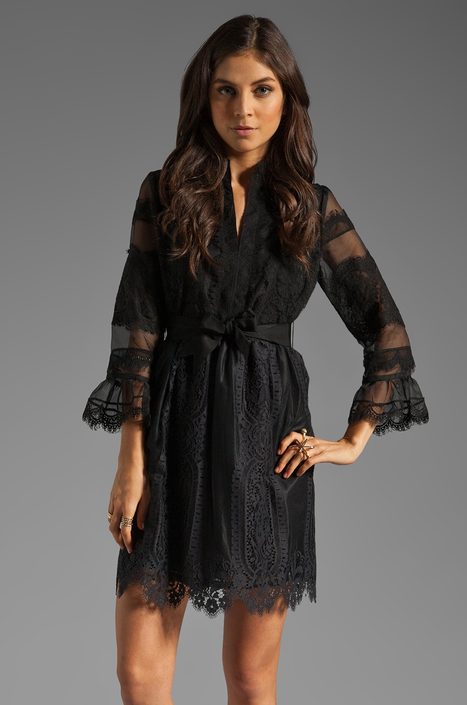 Anna Sui Organza and Lace Long Sleeve Half Placket Dress in Black