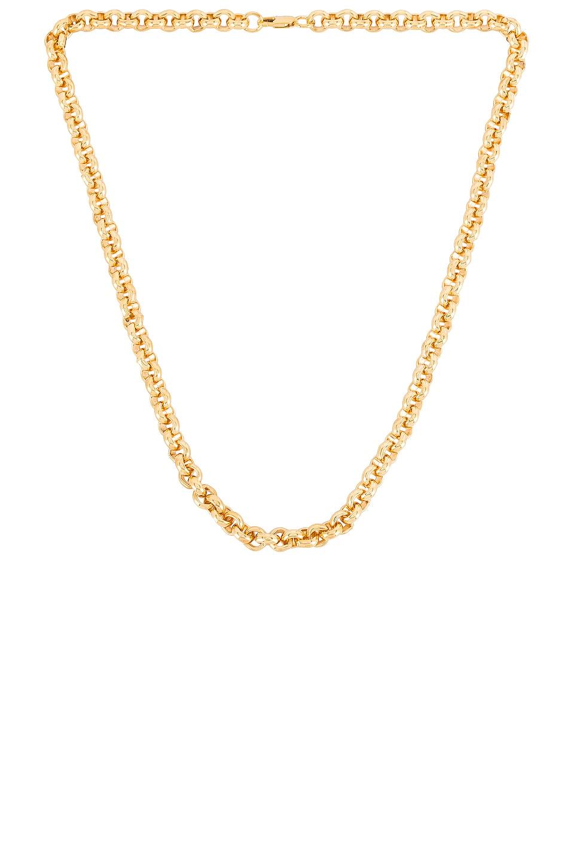 AUREUM Beige Rolo Chain Necklace in Gold