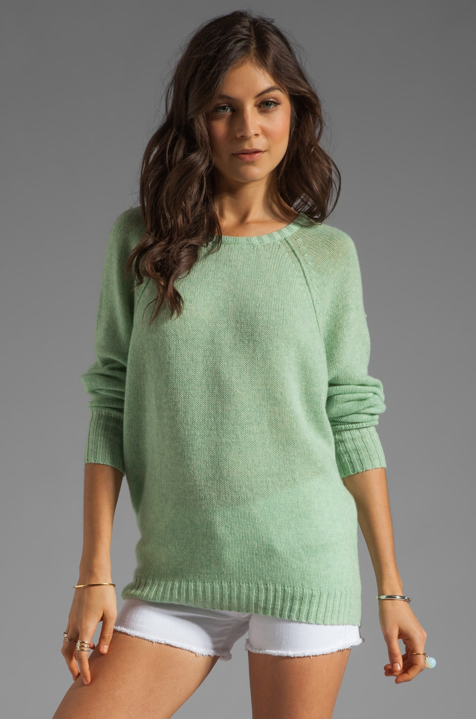 Autumn Cashmere Relaxed Fit Sweater in Aloe