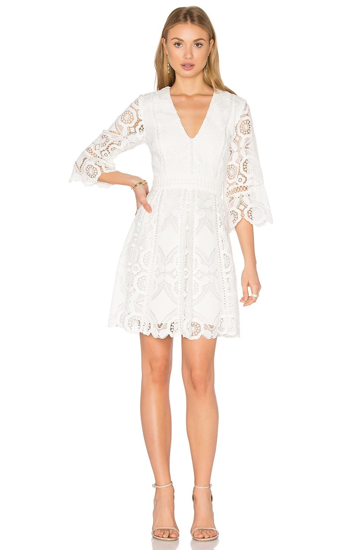 Webb Dress by Alexis