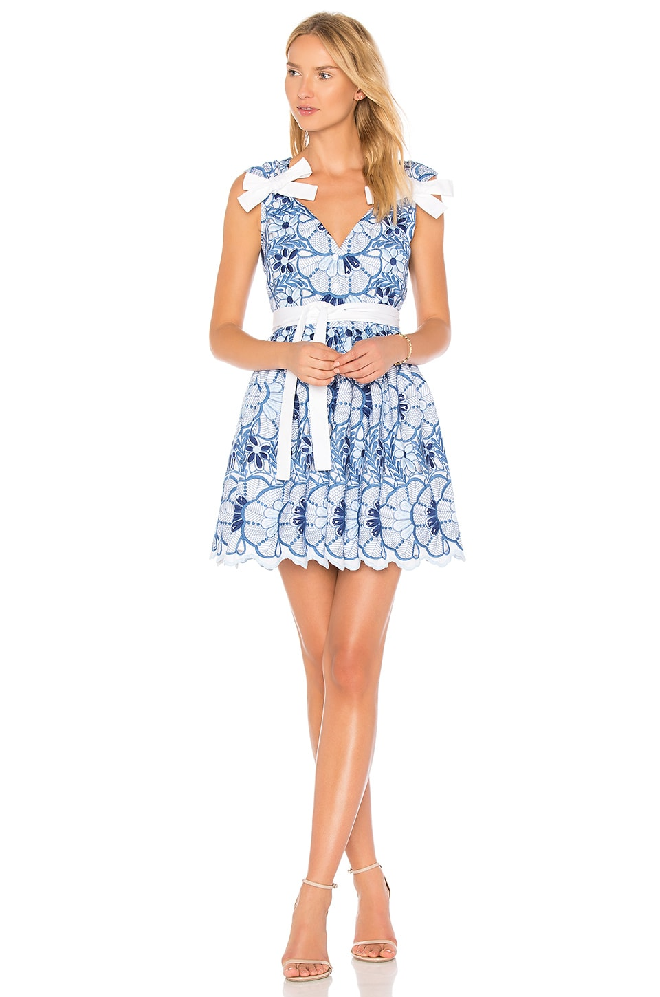 9caa322b Alexis Lucia Dress in Blue Floral Embroidery | REVOLVE