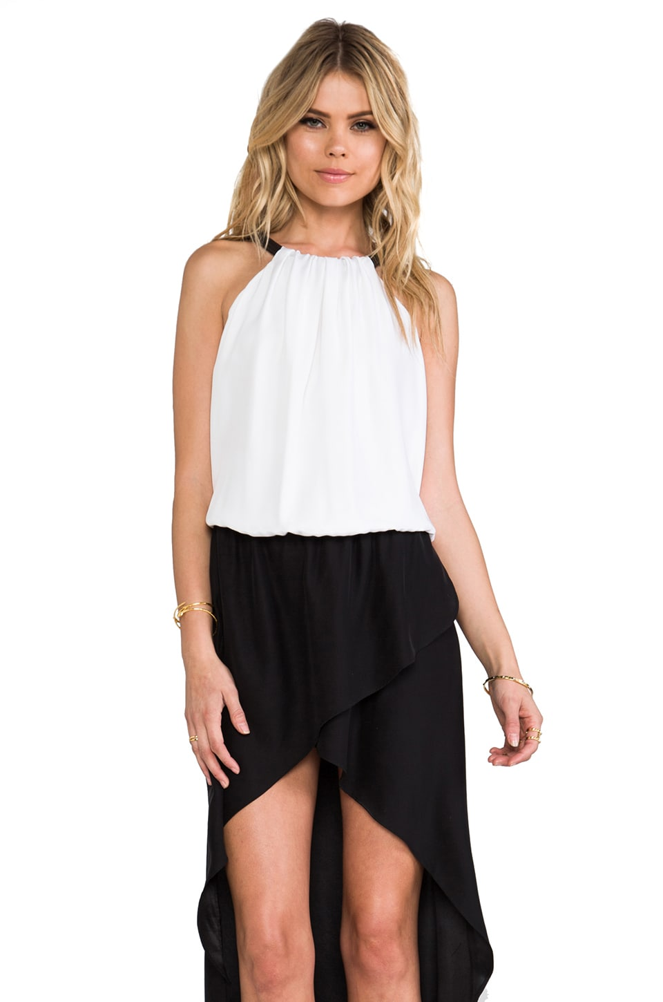 Alexis Swift Dress in Black & White
