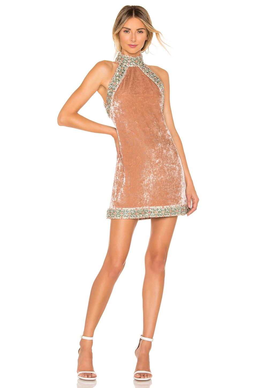 Alexis Kinsley Dress in Blush Velvet