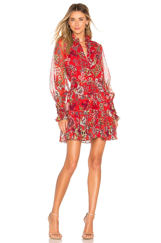 Alexis Jaila Dress in Eden Floral Red