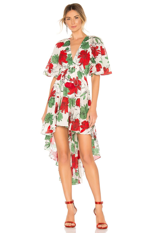 Alexis Dresses Idella Dress