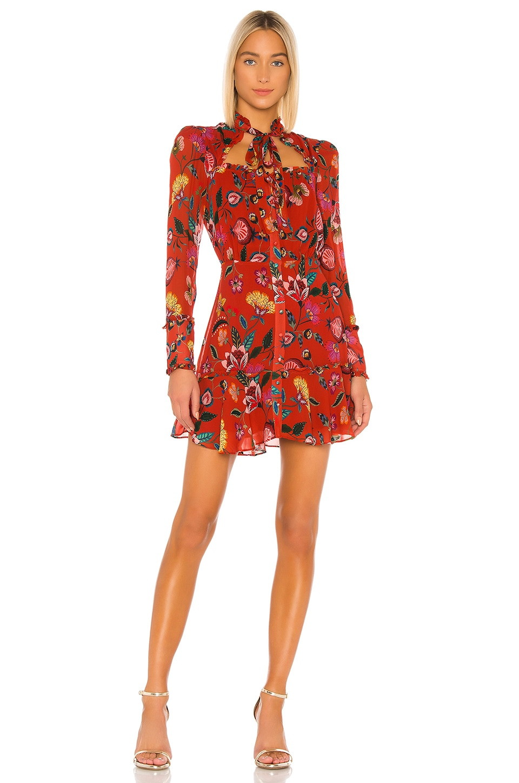 Alexis Morgana Dress in Rust Nouveau