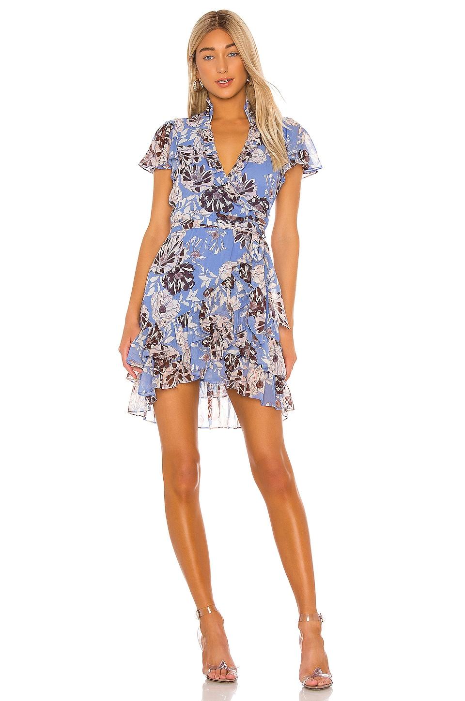 Alexis Melyssa Dress in Blue Floral