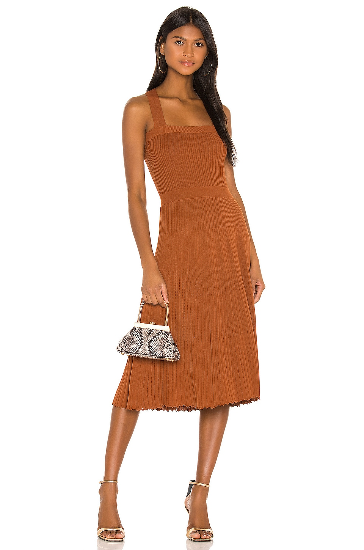 Alexis Bess Dress in Rust
