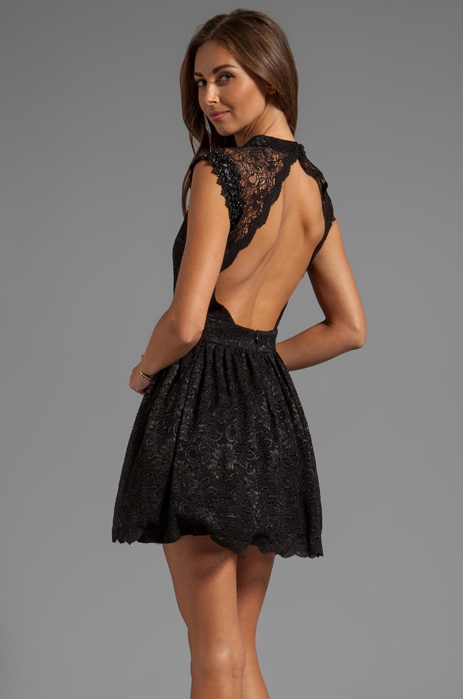 3c48957e4a0 Alexis Короткое кружевное платье Vendela в цвете Black