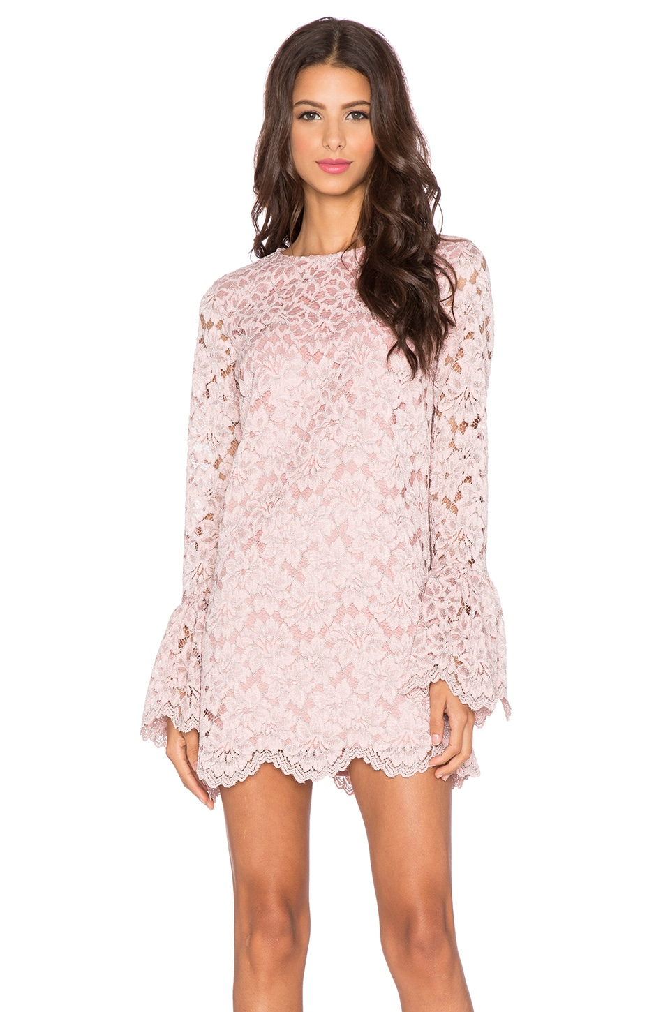 Alexis Rustam Lace Shift Dress in Pink Lace