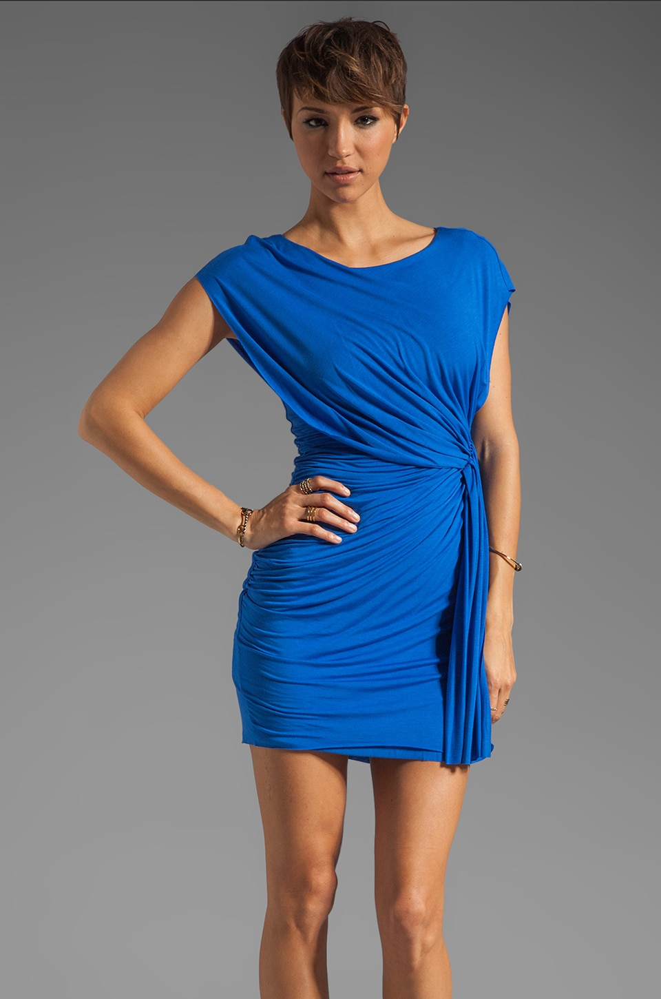 Bailey 44 World's Record Dress in Blue