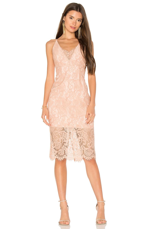 Pencil Lace Midi Dress by Bardot