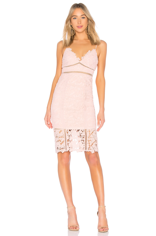 Bardot BOTANICA レースドレス