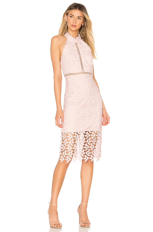 Bardot Gemma Dress in Rosewater