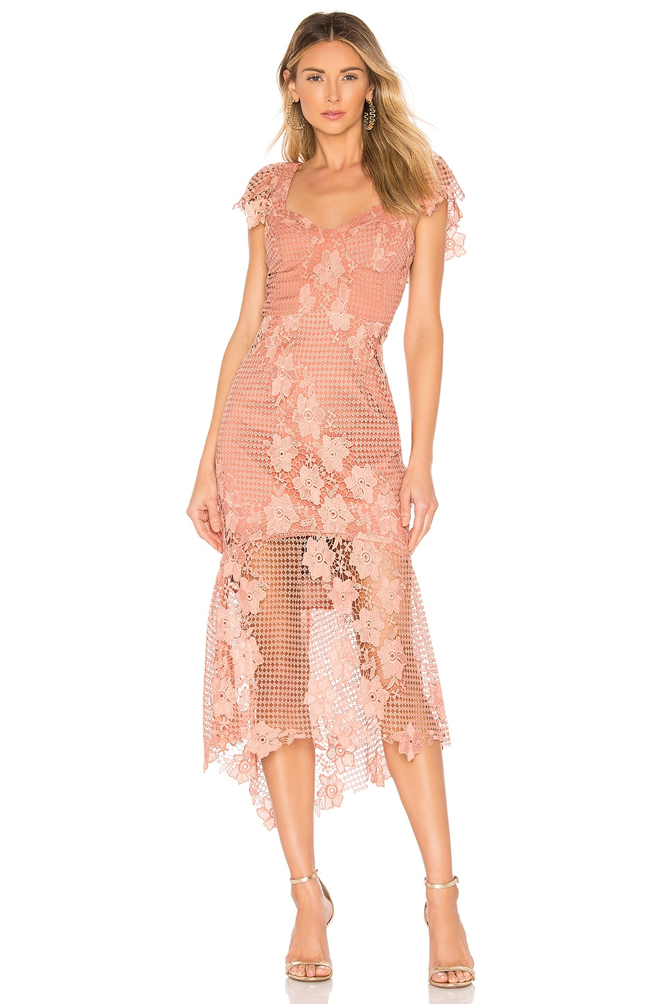 Bardot Lucy Lace Dress in Apricot