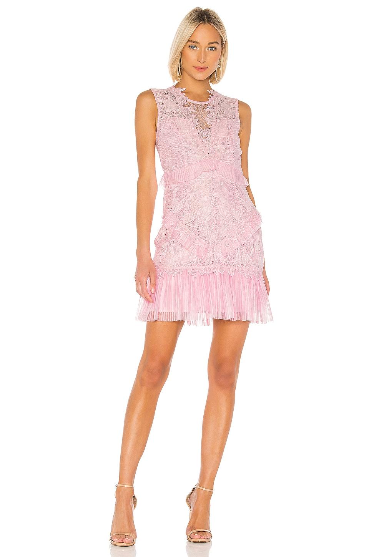 Bardot Francesca Dress in Pink Lady