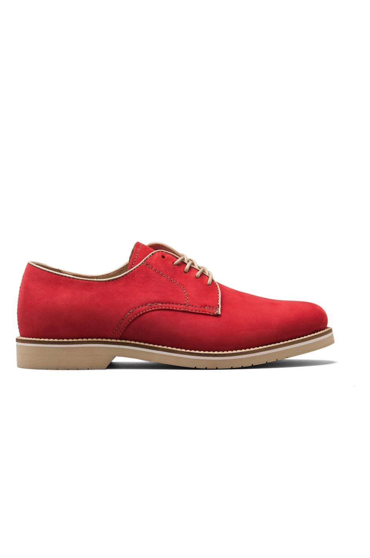 Bass Buckingham in Red