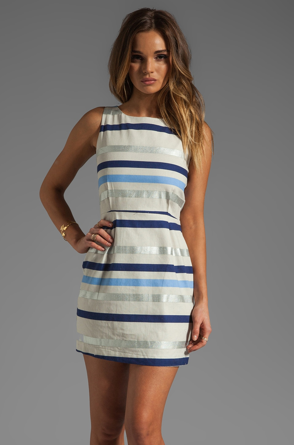 BB Dakota Delaine Stripe Dobby Dress in Multi Blue